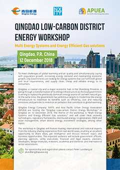 Qingdao Low-carbon District Energy Workshop